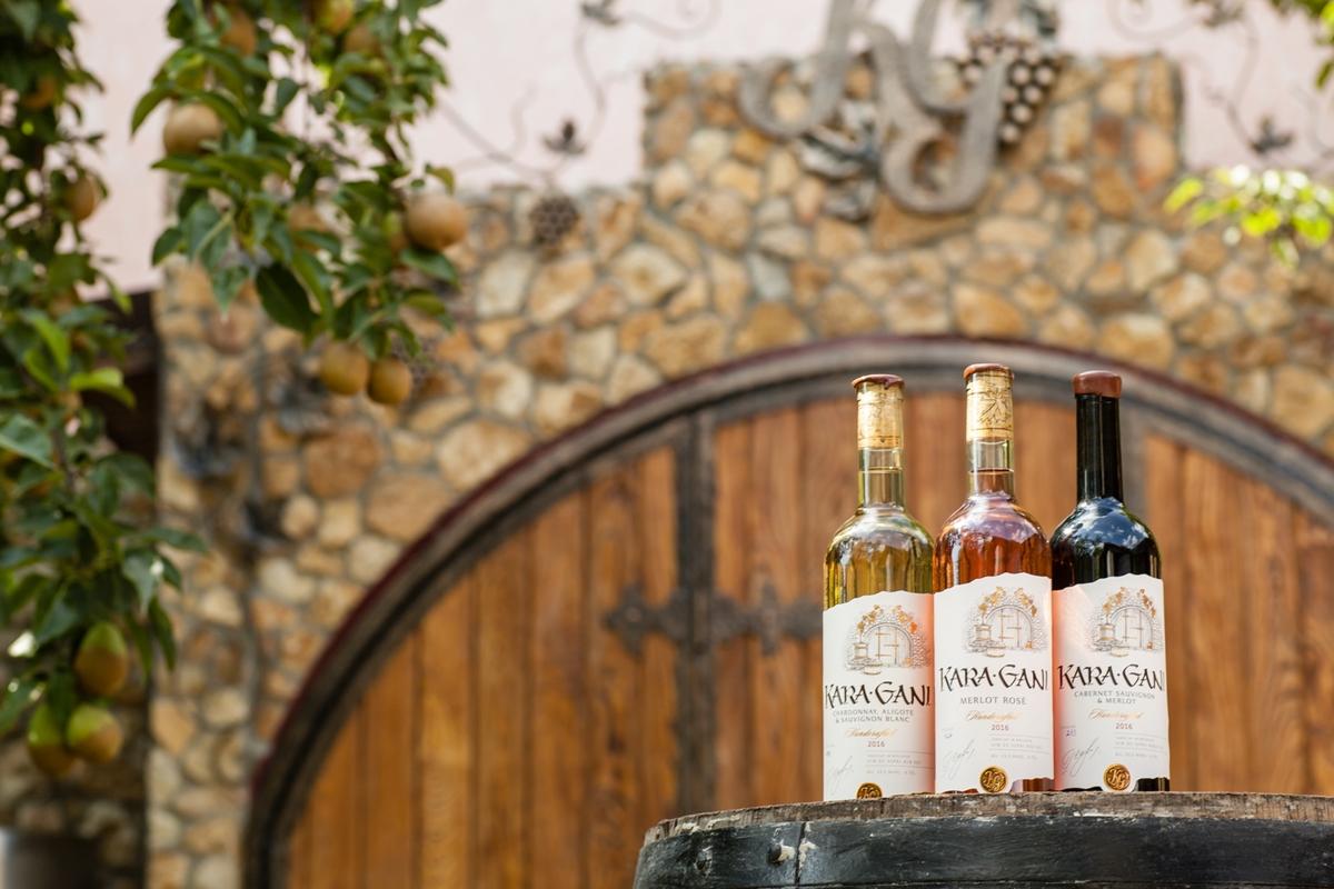 DiscoverGagauzia_Kara Gani-winery