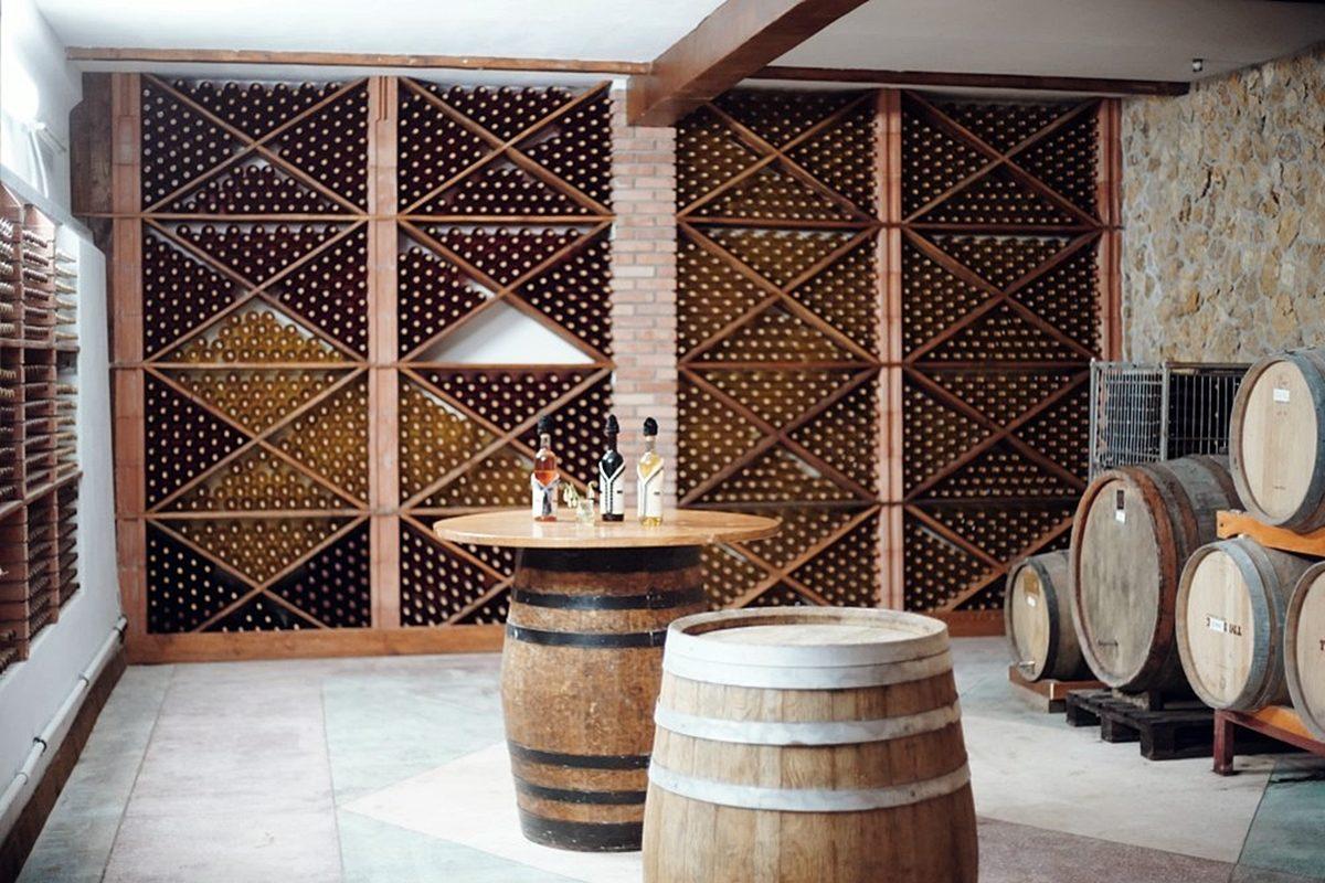 DiscoverGagauzia_KaraGani-winery-1